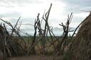 Good fences keep the hyenas away