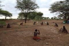 Daasanach Women Building  Investor's Cattle Kraal