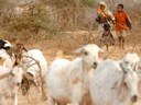 Meeting of pastoralists in South Omo Zone planned for 8-12 November